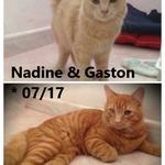 Nadine und Gaston