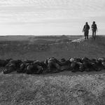 &#169Christine Spengler - Sahara Occidental. Mahbès. 1976