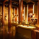 Musée Portuaire - Dunkerque • Muséographie permanente •