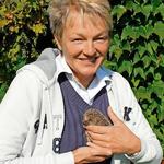 Marion Damm mit einem verletzten Igel (Foto: Josef Schröder)