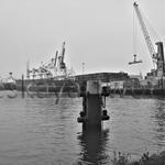 rotterdam containerhafen | 04/2014