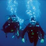 Plongée sous-marine à Sanary sur Mer