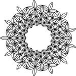 「麻の輪」13個の麻柄が並んで輪となる。20160320