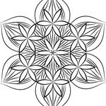 六枚花とフラワーオブライフの組み合わせ。