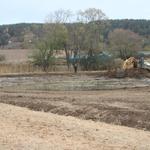 Rohrwiesen nach den Bagger-Maßnahmen (Bild: Lars Stoltze)