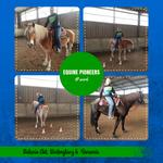 Equine Pioneers - tolle Hoodies von Team Western