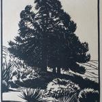Burnot, Vaucondry, 1924