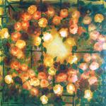 Dalla finestra  - tela cm. 100 x 100 Elisa Geyer