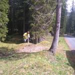 Zaun aufstellen Schonung Spullerwald