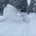 Steyr 6175 CVT Engerle Wald