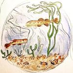 15 poisson