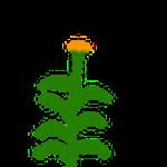 noch eine Pflanze :D