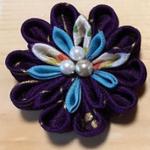 姫菊丸ピンクリップ 紫