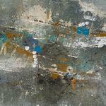 Taphozönose, 60 x 40 x 2 cm