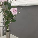 artundcolour fugenloser wandbelag gobbetto liscio grigio in dettighofen
