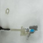Symphonie, encre sur papier Arches, 57x76 cm, 2011