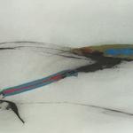 La nature s'enrubanne, encre sur papier Arches, 76x57 cm, 2007