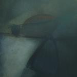 Galet poli, encre sur papier Arches, 50x64 cm, 1988