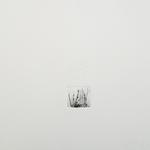 Rizière, gravure pointe sèche, gaufrage, 40x40 cm, 2/2, 2003