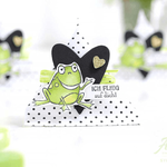 Frosch Boxen Verpackungen
