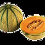 1993 - il melone