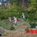 北側植林地