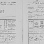 Zählbogen der Volkszählung 1921 von Hainspach
