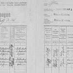 Zählbogen von 1921, Wohnunginsassen der Wohnung Nr. 1 in Niederkreibitz Nr. 223