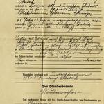 Auszug aus dem Sterberegister des Standesamtes Roschütz zum Tod von Auguste Wilhelmine Neitsch, geb. Heinze aus dem Jahr 1911.