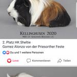 Quelle: Facebook Kristallschweinchen/ Copyright by Annika Henkel