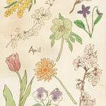 春のリコールカード チューリップ・桜・ミモザ-photoshop
