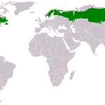 Verbreitung der borealen Nadelwälder (Taiga)