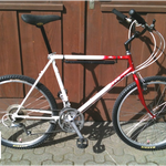 "NANDROLON, Villiger, Clunker Bike ""Allround"""
