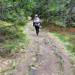 Der Abstieg zur Hergottschnitzerhütte
