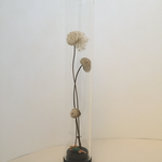 Fruchtstand unter Glas, Höhe 22cm