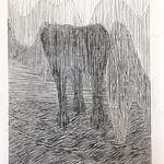 ddbba, 120 x 100 cm, 2018