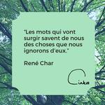 Time to C'ink - Citation - Ecrire - Char