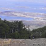 Bild: Panoramablick auf den Beagle-Kanal