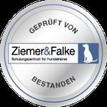 Hundeschule Dortmund Witten Herdecke zertifizierte Hundetrainerin Mantrailing Logo