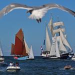 Einlaufen Warnemünde Haikutteregatta 2012