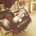 Het reclamebord voor Rituals, als display bij hun winkel in Antwerpen