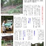 P4 森林浴の森