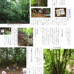 p6 鳥垣渓谷~シデ山登山(3)