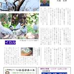 P11 上林の鳥たち