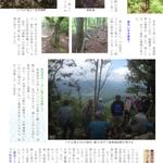 p8 鳥垣渓谷~シデ山登山(5)