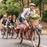 Anjou Vélo Vintage - Gite des Nerleux, 8-12 p