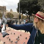 barcelona_pigeons