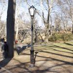 newyork_central_park
