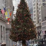 newyork_rockefeller_christmastree