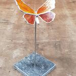 vlinder oranje
